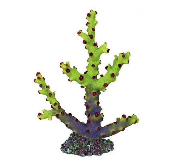 Coral Decorativo Verde TRIXIE