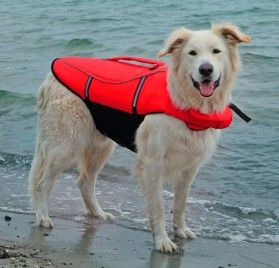 Life Jacket for dogs TRIXIE