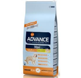ADVANCE Adult Maxi